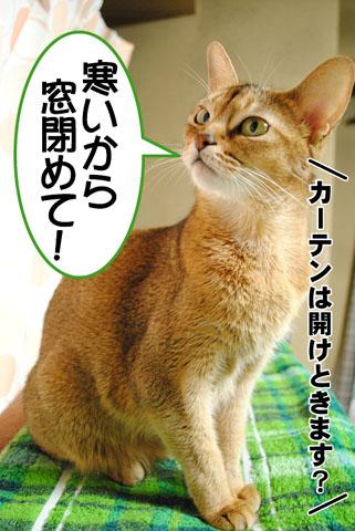 20100924_02.jpg