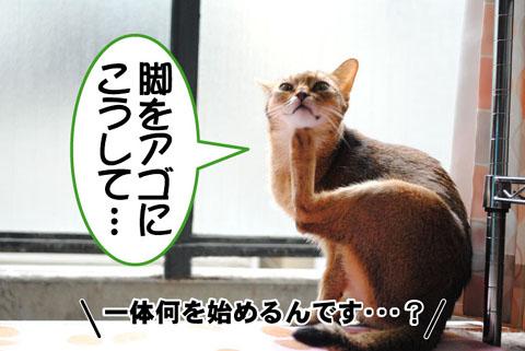 20101003_02.jpg