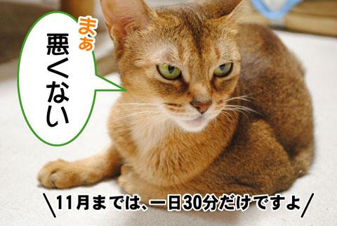 20101004_01.jpg