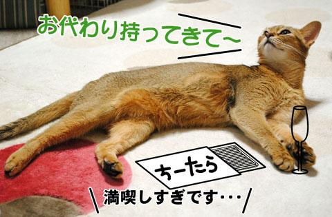 20101007_01.jpg