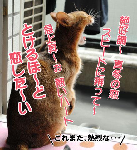 20101020_01.jpg