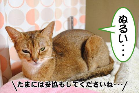 20101024_01.jpg