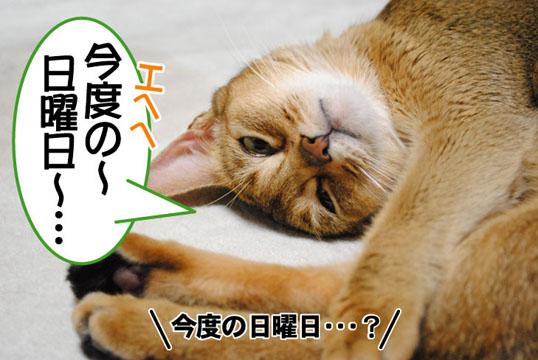 20101110_01.jpg