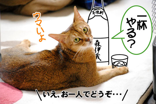 20101123_02.jpg