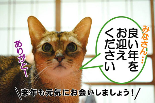 20101231_05.jpg