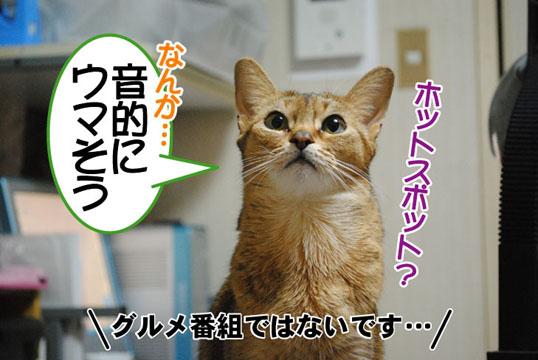 20110112_01.jpg