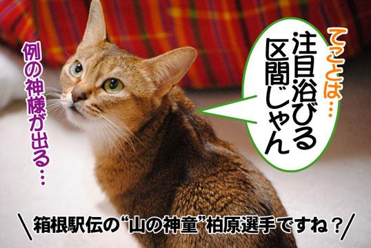 20110115_02_02.jpg