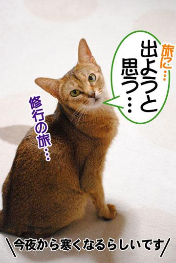 20110130_01.jpg