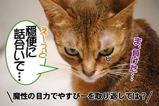 20110224_03.jpg