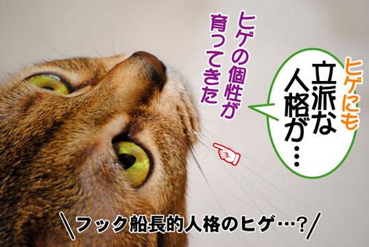 20110302_01.jpg