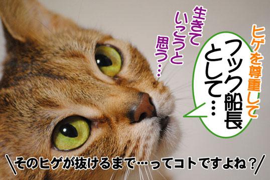 20110302_02.jpg