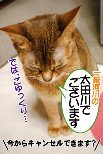 20110304_03.jpg