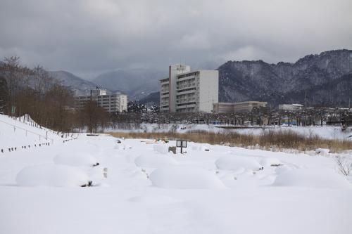2012_0110_4.jpg