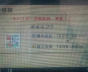 110417_082745.jpg