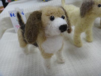 羊毛 ビーグル