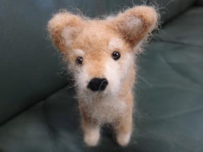 犬毛 ひろし