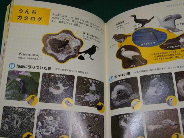book20121107.jpg