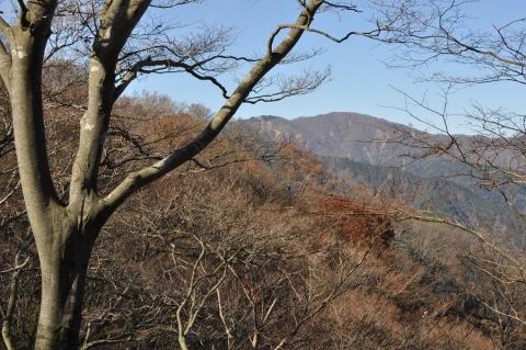 20131124 tanzawa 008