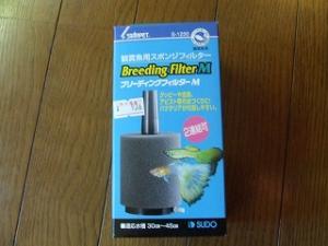 DSCF2371_convert_20101214214927.jpg