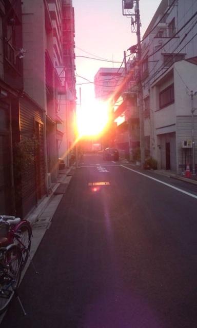 春の夕日1