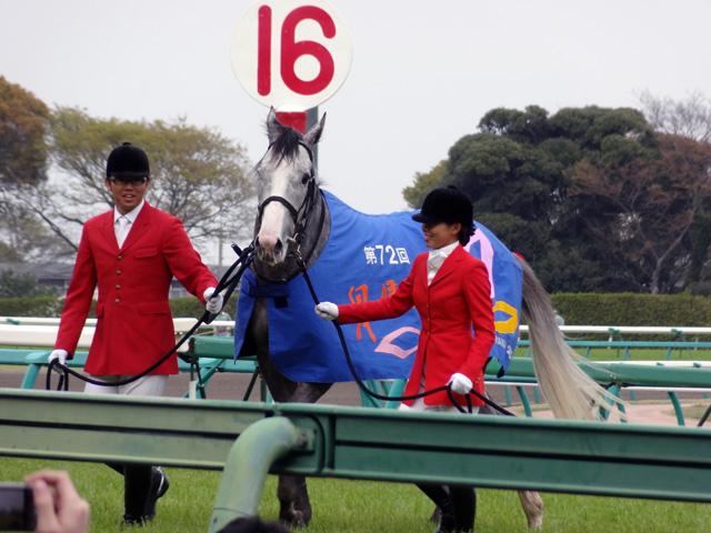 第72回 皐月賞08