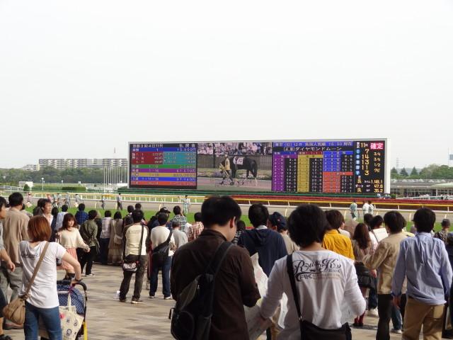 第145回天皇賞(春)21