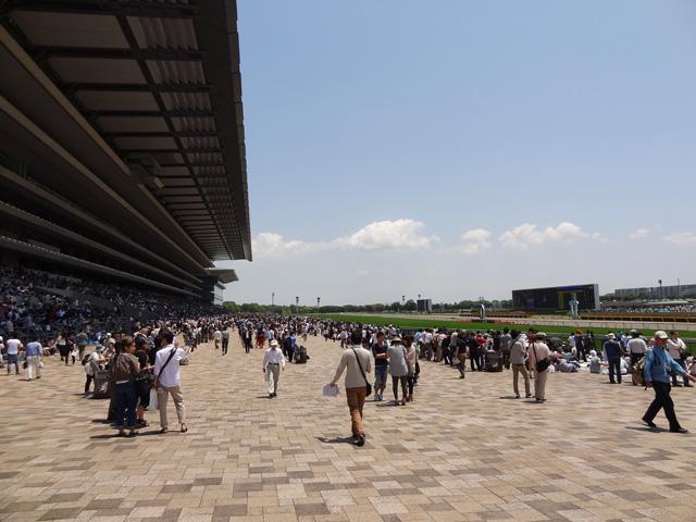 2012日本ダービー01
