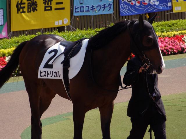 2012日本ダービー17
