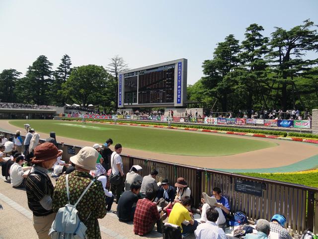 2012日本ダービー15