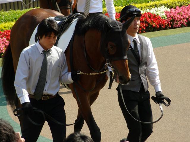2012日本ダービー21