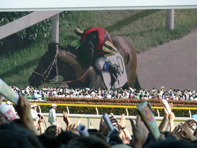 2012日本ダービー26