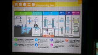 DSC_0535_convert_20110613105256.jpg