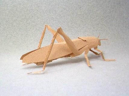 切り折り紙 トノサマバッタ