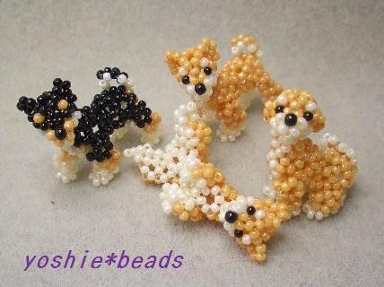 柴犬(ねころびポーズ)