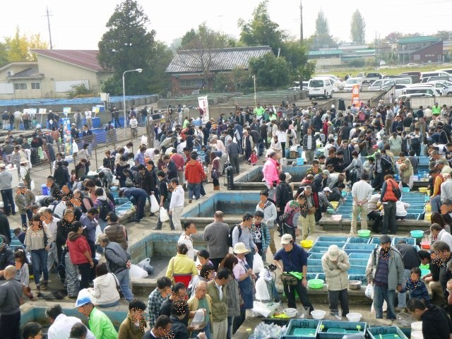 埼玉養殖魚まつり