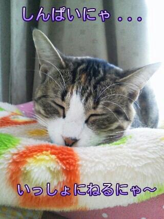 fc2blog_20120522152833b3a.jpg