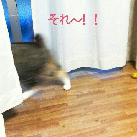 fc2blog_201207082349456af.jpg
