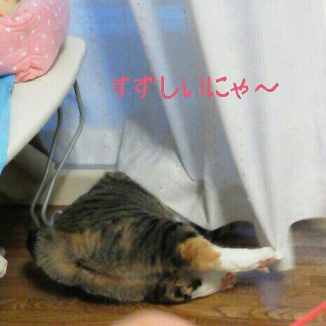 fc2blog_20120708235349a7b.jpg