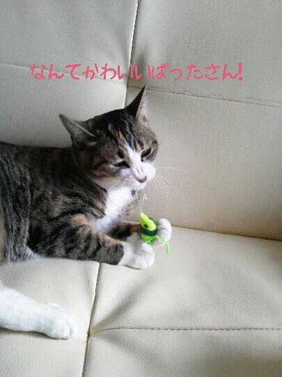 fc2blog_20120722002708e05.jpg