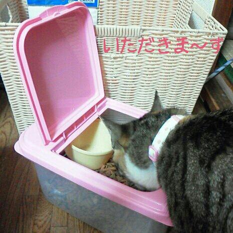 fc2blog_2012072421012496f.jpg