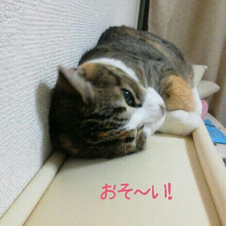 fc2blog_2012090617335637e.jpg