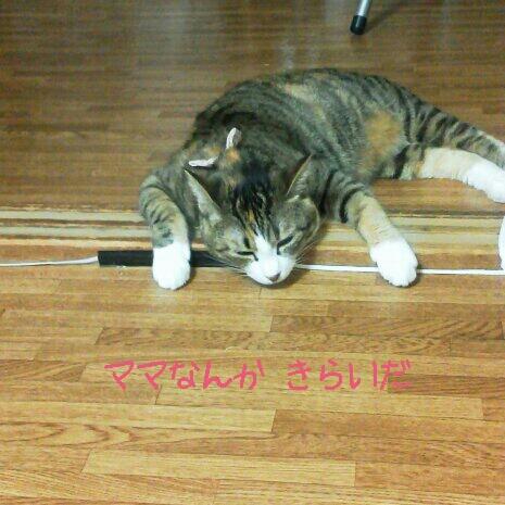 fc2blog_2012090617350925c.jpg