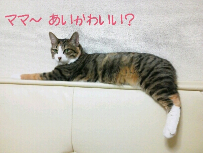 fc2blog_20120912092744707.jpg