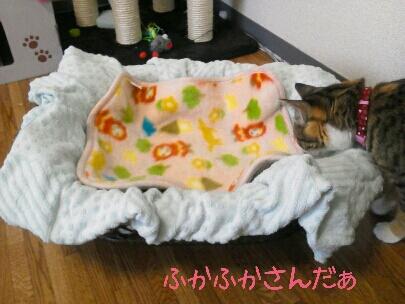 fc2blog_20120917101236991.jpg