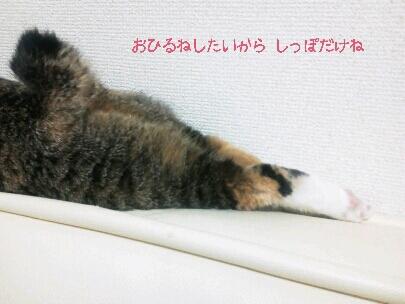 fc2blog_20120918204441a93.jpg