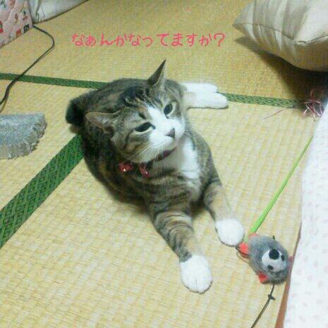 fc2blog_20120919004439444.jpg