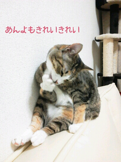 fc2blog_20120926235334377.jpg