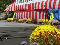 H231016メイン会場を飾る花