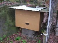 H231202蜂巣箱の冬支度