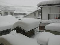 H240127おたや会 雪の渋温泉